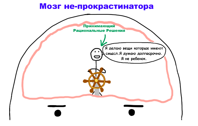 Мозг не-прокрастинатора